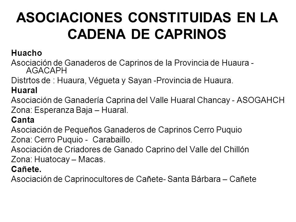 ASOCIACIONES CONSTITUIDAS EN LA CADENA DE CAPRINOS