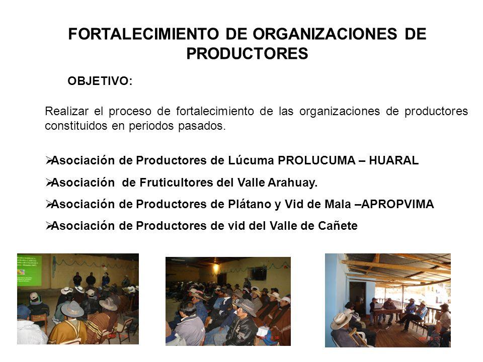 FORTALECIMIENTO DE ORGANIZACIONES DE PRODUCTORES