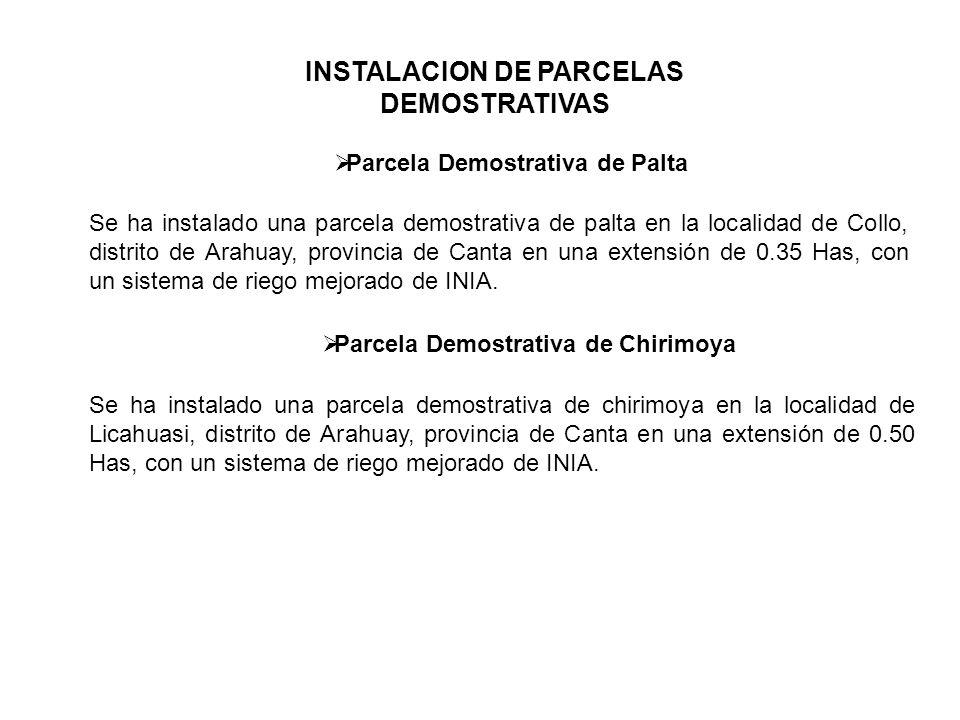 INSTALACION DE PARCELAS DEMOSTRATIVAS