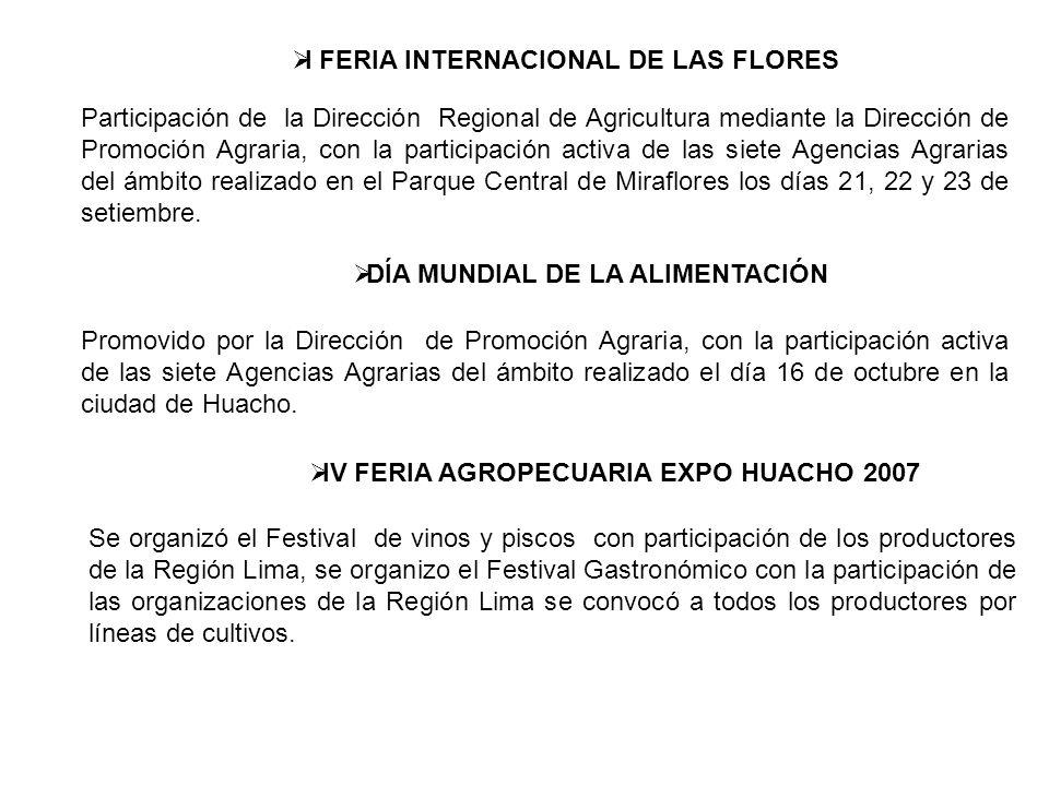 I FERIA INTERNACIONAL DE LAS FLORES