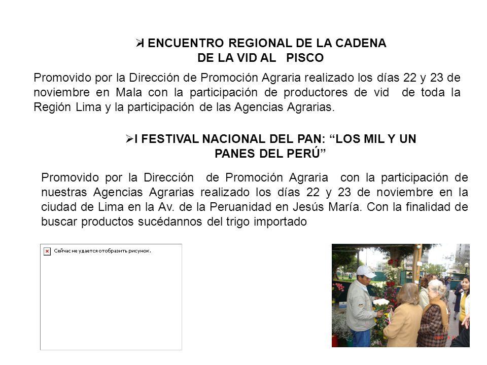 I ENCUENTRO REGIONAL DE LA CADENA DE LA VID AL PISCO