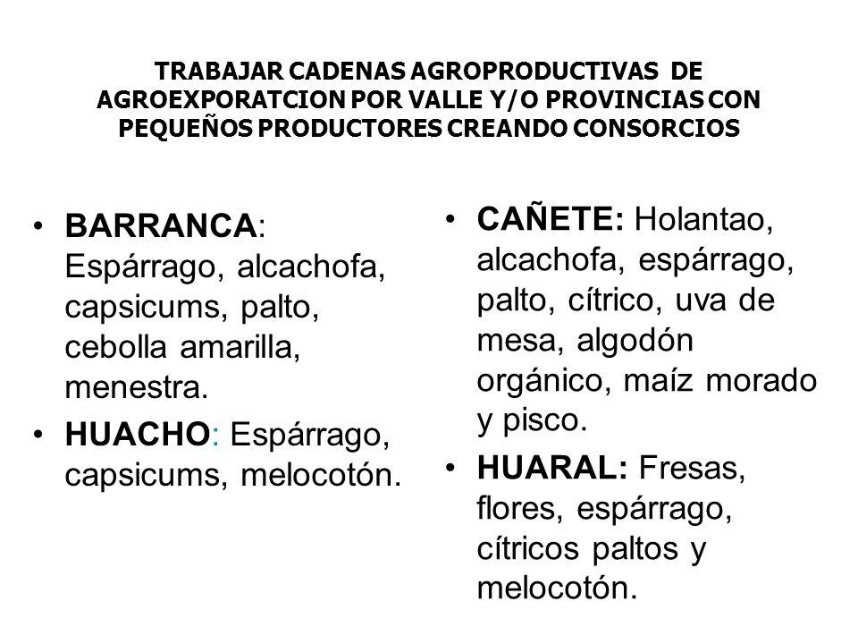 HUARAL: Fresas, flores, espárrago, cítricos paltos y melocotón.