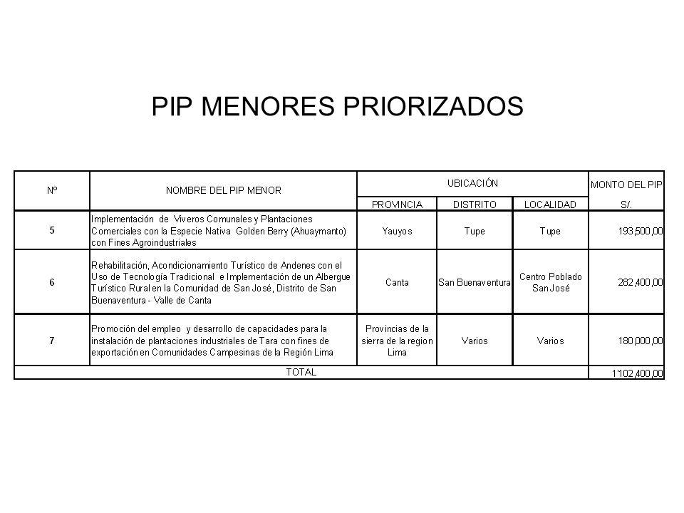 PIP MENORES PRIORIZADOS