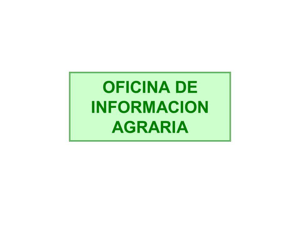 Gobierno regional de lima direccion regional de for Oficina informacion