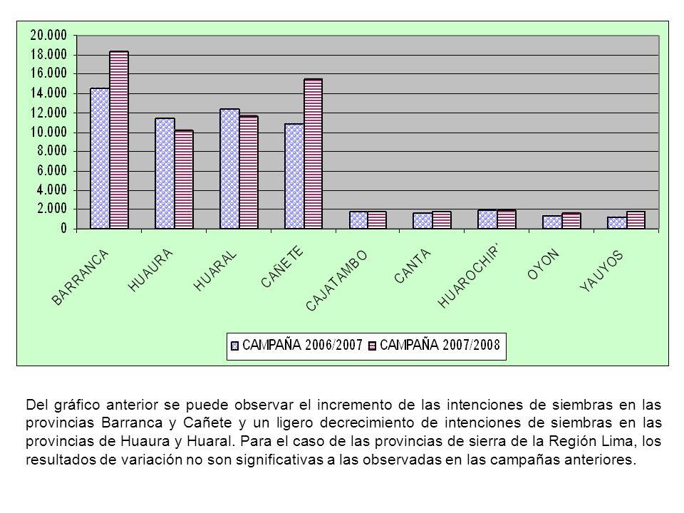 Del gráfico anterior se puede observar el incremento de las intenciones de siembras en las provincias Barranca y Cañete y un ligero decrecimiento de intenciones de siembras en las provincias de Huaura y Huaral.
