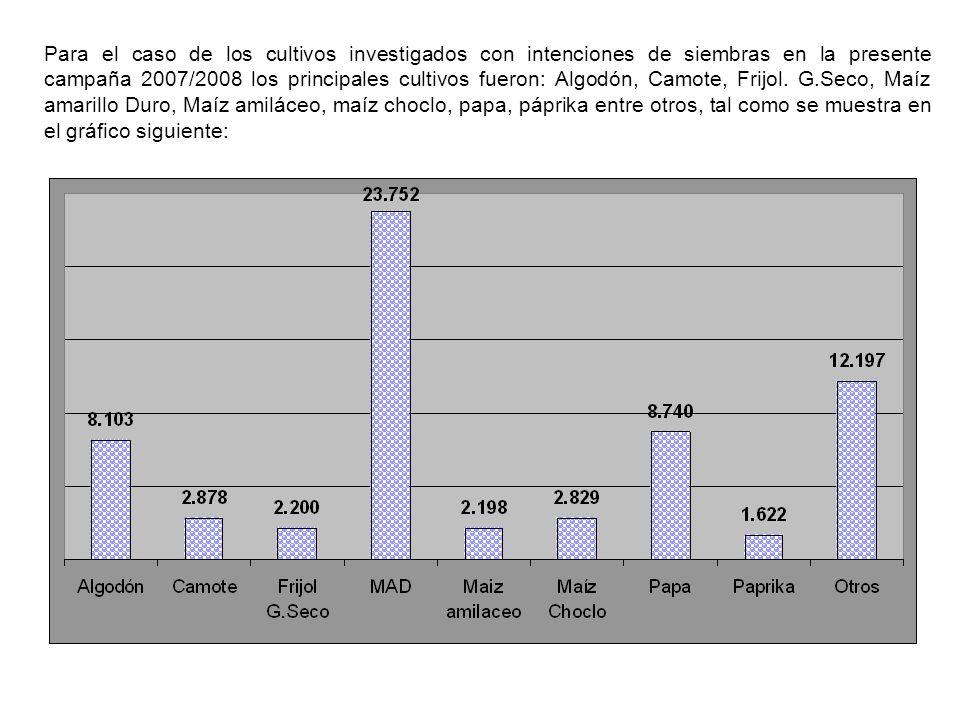 Para el caso de los cultivos investigados con intenciones de siembras en la presente campaña 2007/2008 los principales cultivos fueron: Algodón, Camote, Frijol.