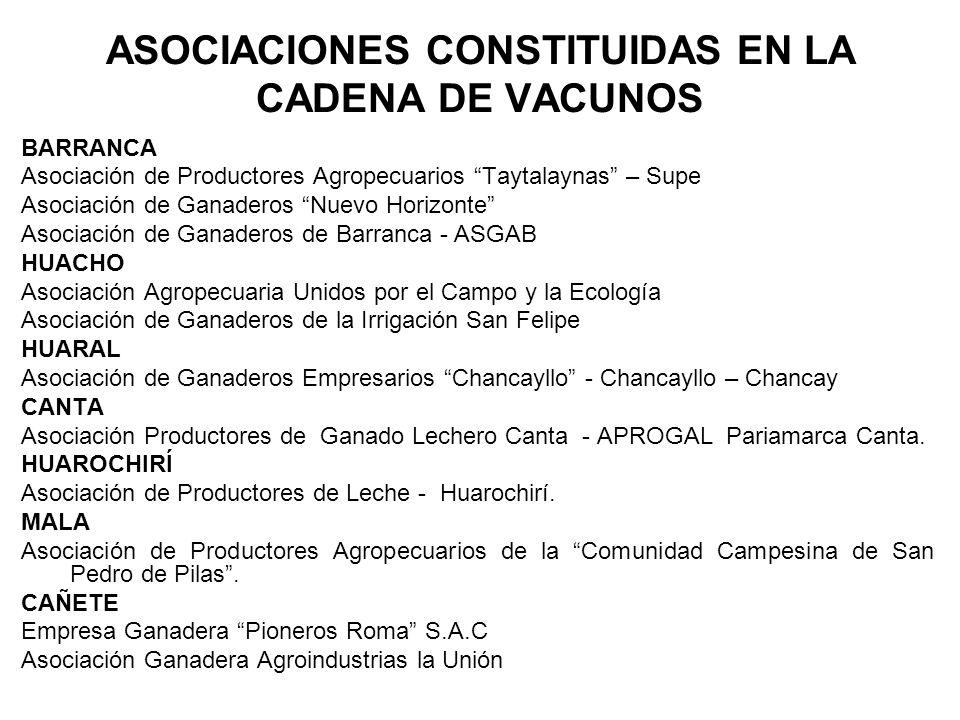 ASOCIACIONES CONSTITUIDAS EN LA CADENA DE VACUNOS