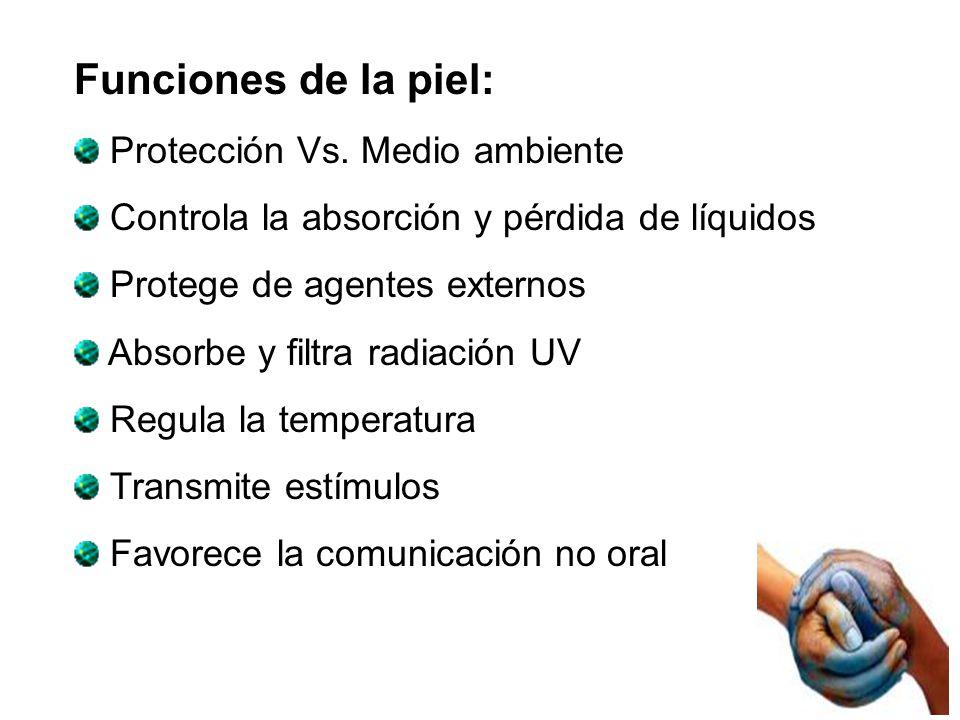 Funciones de la piel: Protección Vs. Medio ambiente