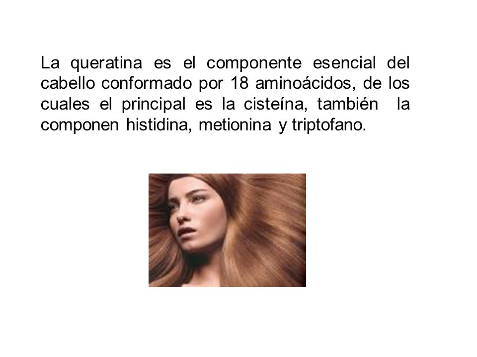 La queratina es el componente esencial del cabello conformado por 18 aminoácidos, de los cuales el principal es la cisteína, también la componen histidina, metionina y triptofano.