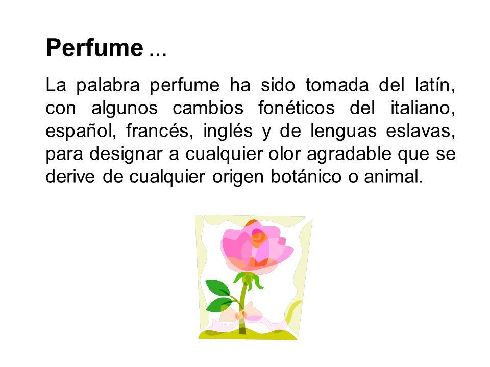 Perfume …