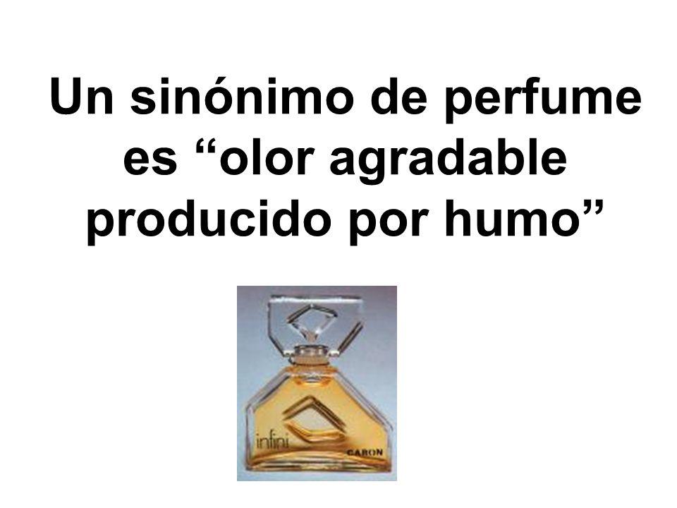 Un sinónimo de perfume es olor agradable producido por humo