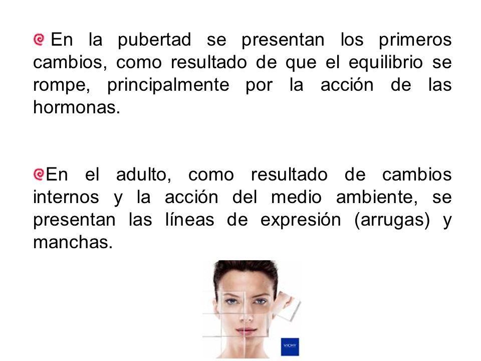 En la pubertad se presentan los primeros cambios, como resultado de que el equilibrio se rompe, principalmente por la acción de las hormonas.