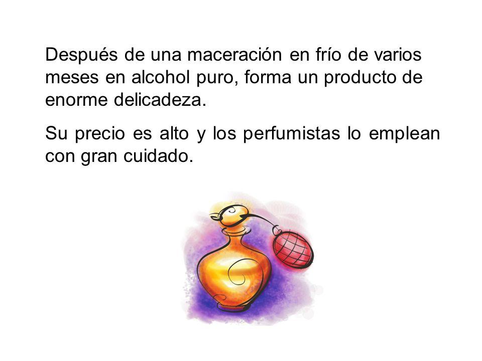 Después de una maceración en frío de varios meses en alcohol puro, forma un producto de enorme delicadeza.