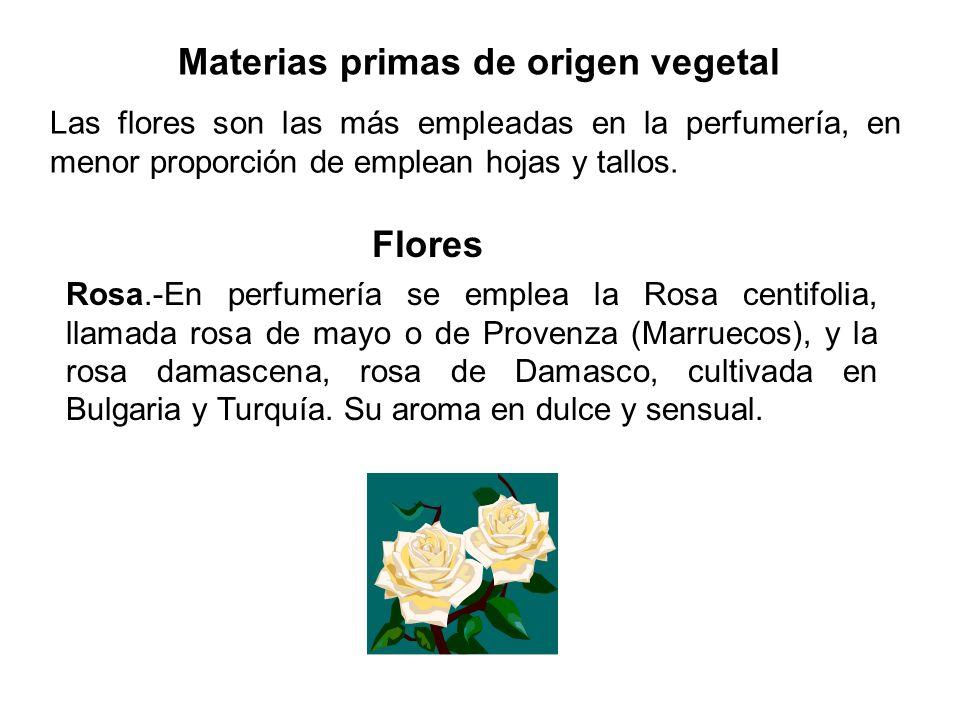 Materias primas de origen vegetal