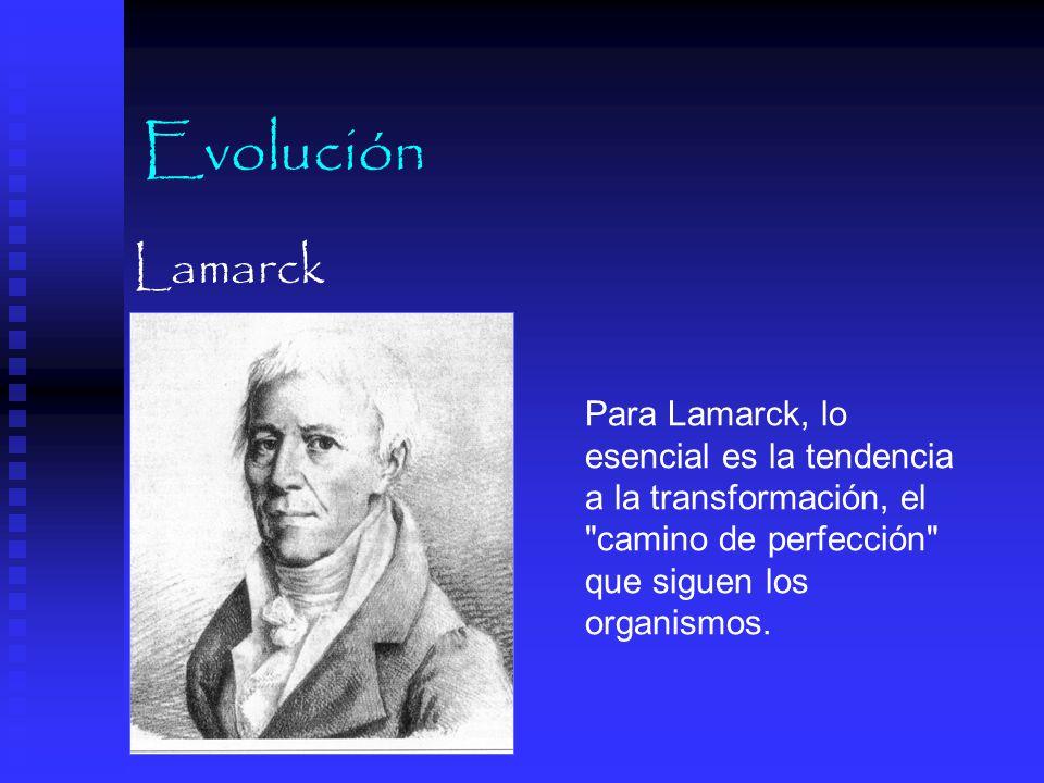 Evolución Lamarck.