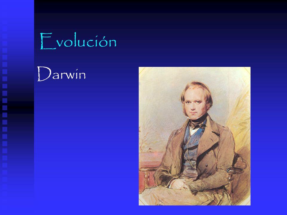 Evolución Darwin