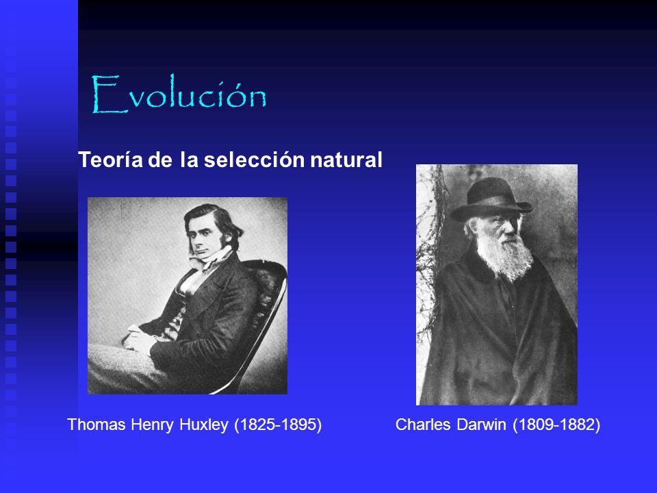 Evolución Teoría de la selección natural