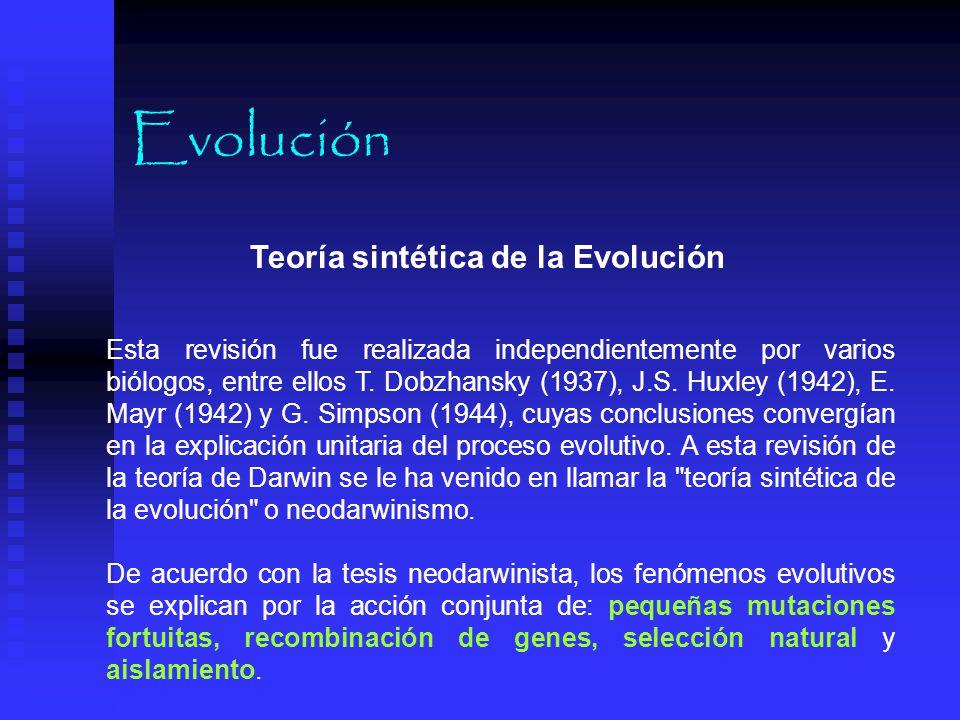 Evolución Teoría sintética de la Evolución