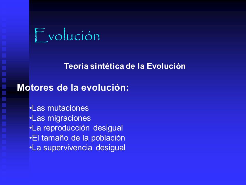 Evolución Motores de la evolución: Teoría sintética de la Evolución