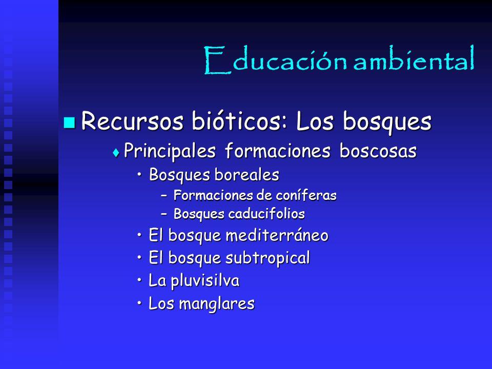Educación ambiental Recursos bióticos: Los bosques