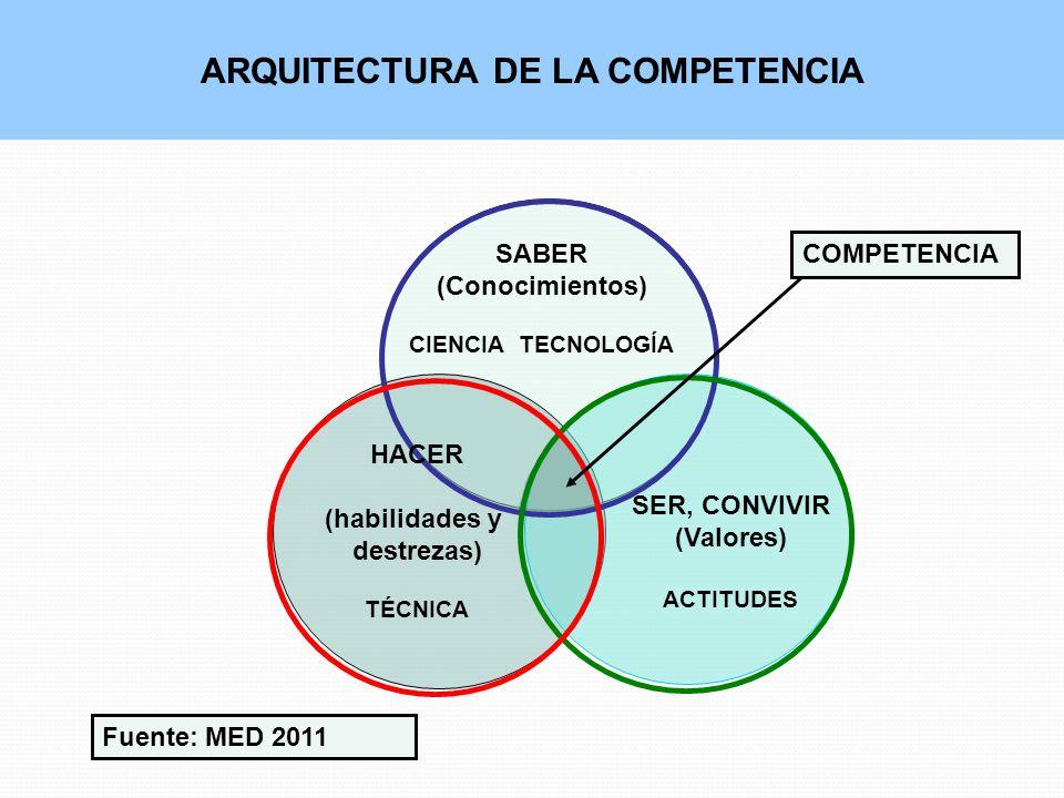 ARQUITECTURA DE LA COMPETENCIA