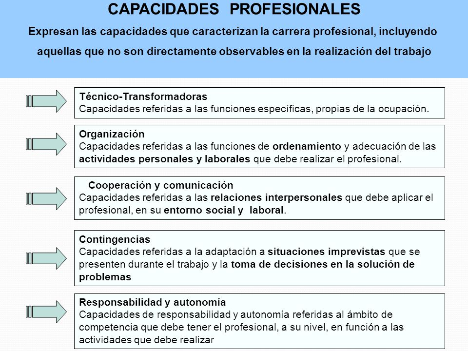 CAPACIDADES PROFESIONALES