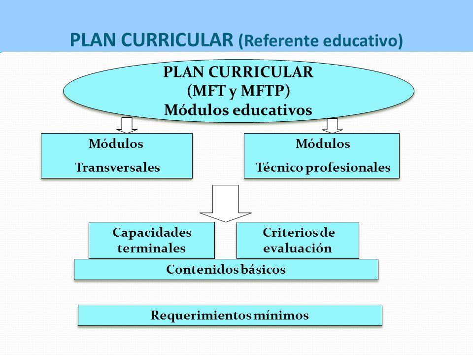 PLAN CURRICULAR (Referente educativo)