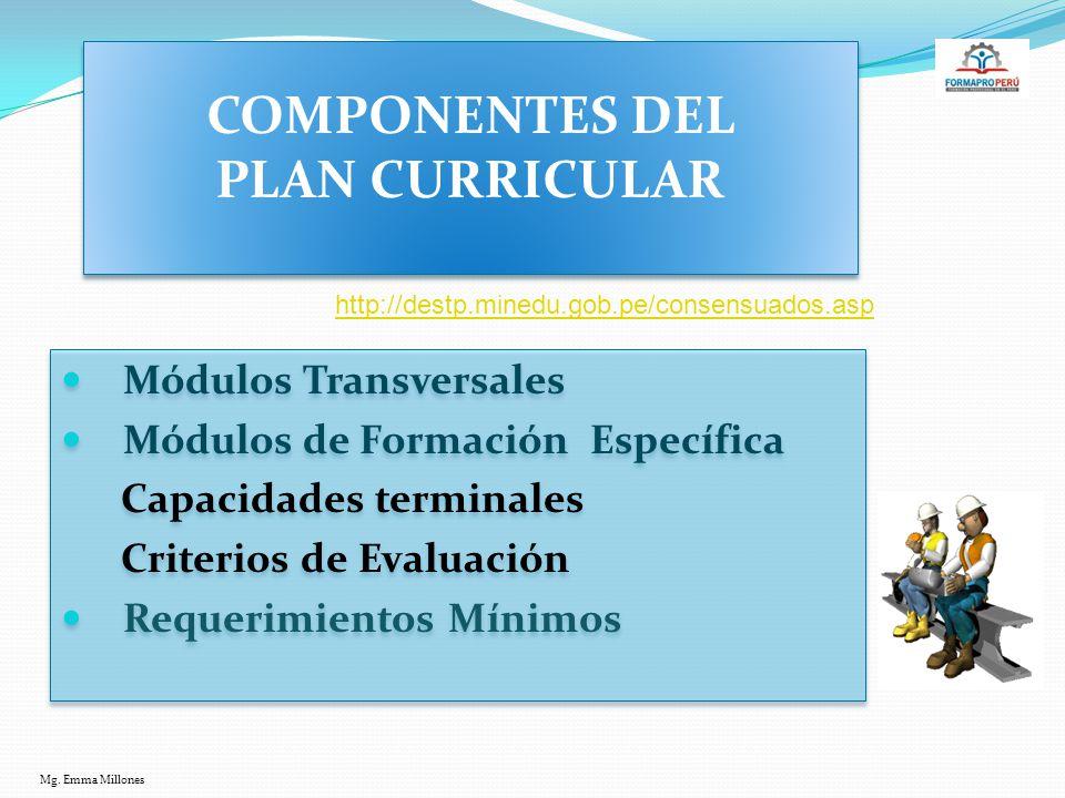 COMPONENTES DEL PLAN CURRICULAR