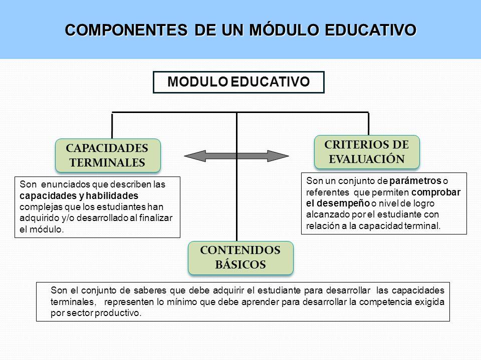 COMPONENTES DE UN MÓDULO EDUCATIVO