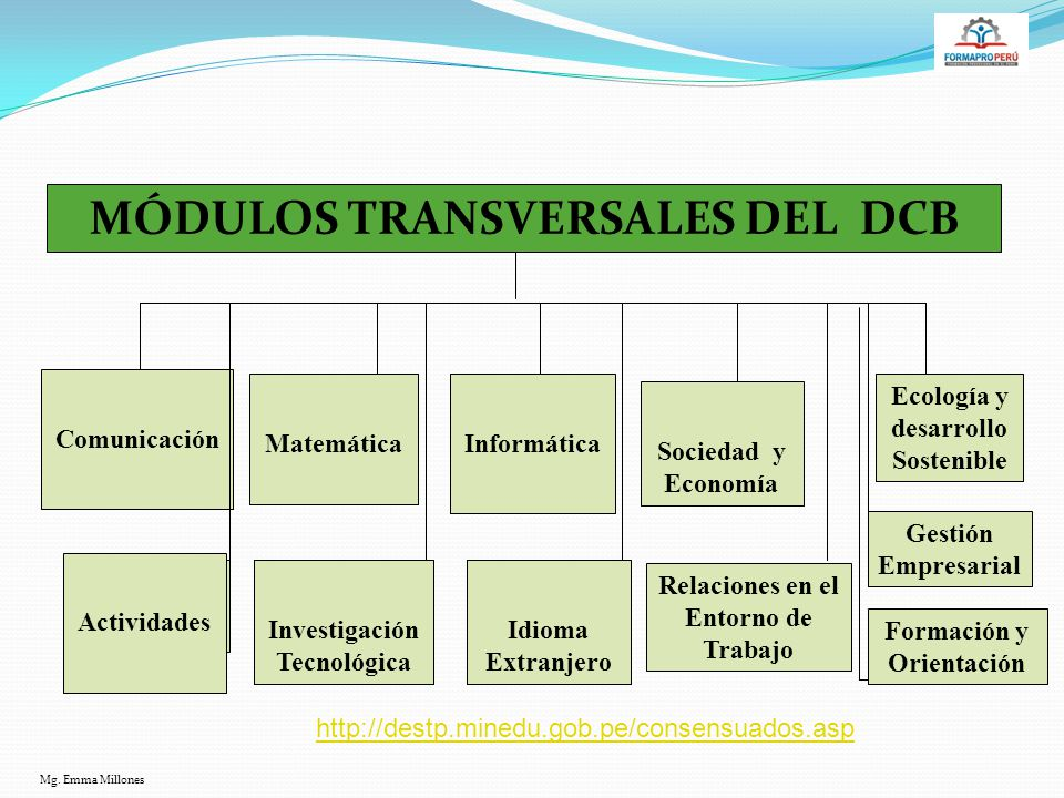 MÓDULOS TRANSVERSALES DEL DCB