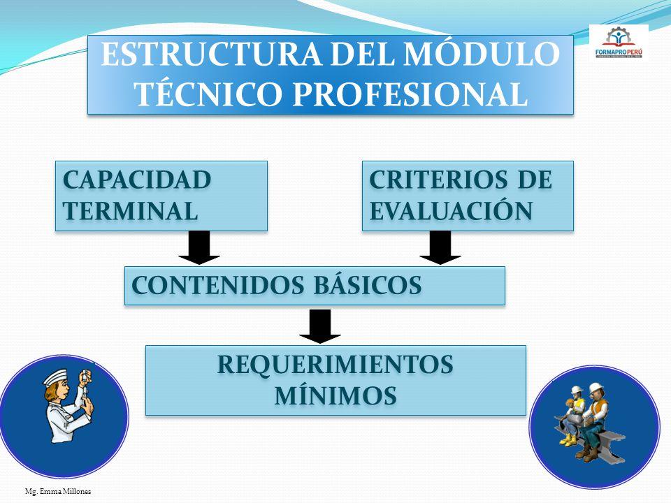 ESTRUCTURA DEL MÓDULO TÉCNICO PROFESIONAL