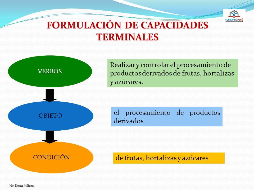 FORMULACIÓN DE CAPACIDADES TERMINALES