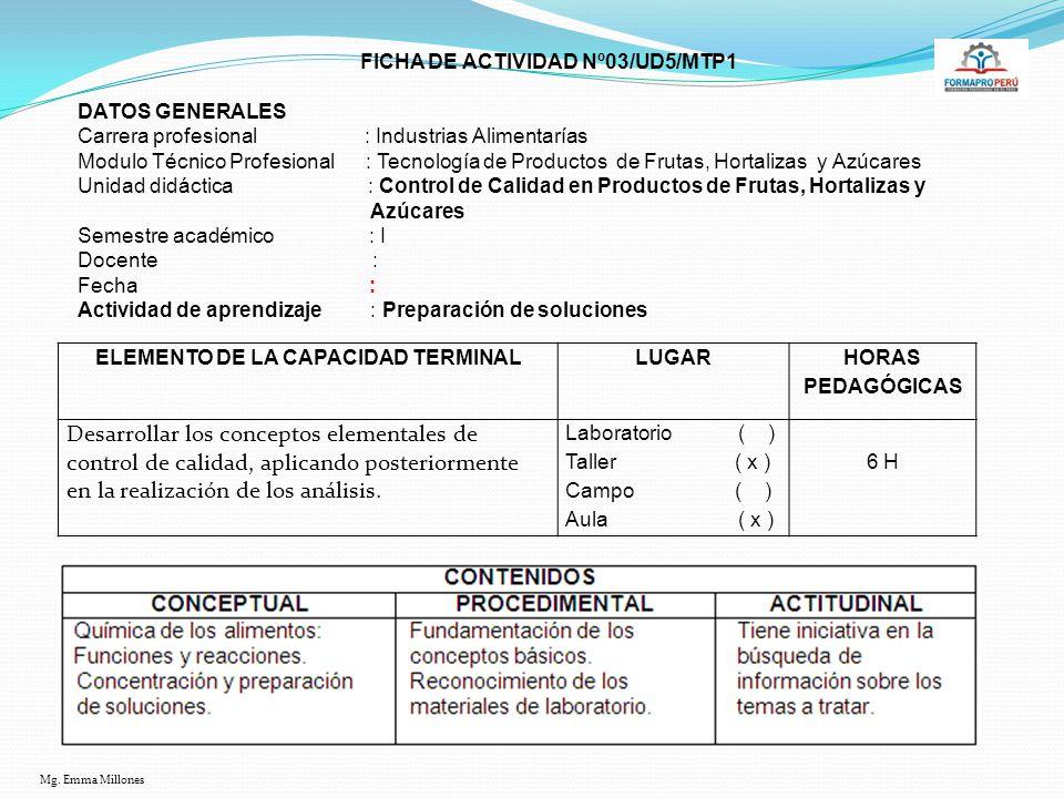 ELEMENTO DE LA CAPACIDAD TERMINAL