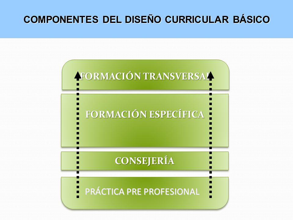 COMPONENTES DEL DISEÑO CURRICULAR BÁSICO FORMACIÓN TRANSVERSAL