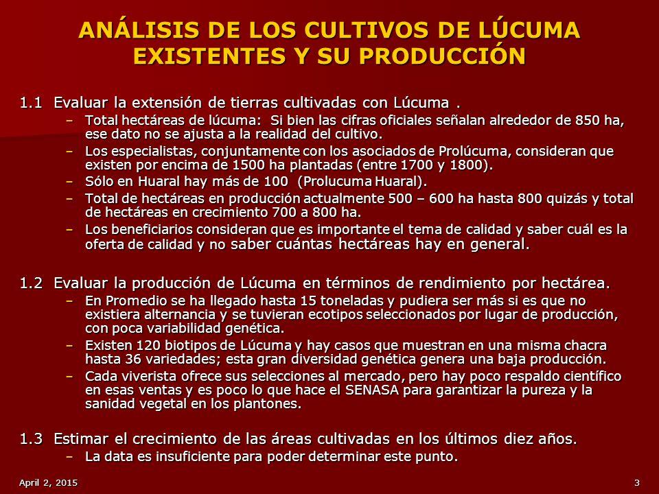 ANÁLISIS DE LOS CULTIVOS DE LÚCUMA EXISTENTES Y SU PRODUCCIÓN
