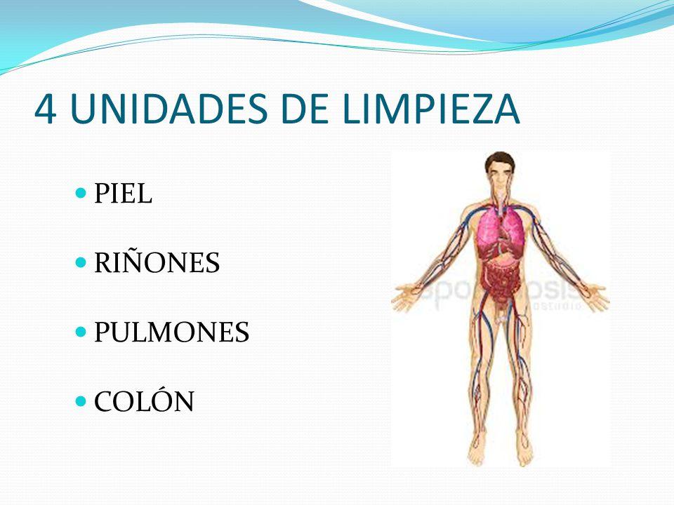 4 UNIDADES DE LIMPIEZA PIEL RIÑONES PULMONES COLÓN