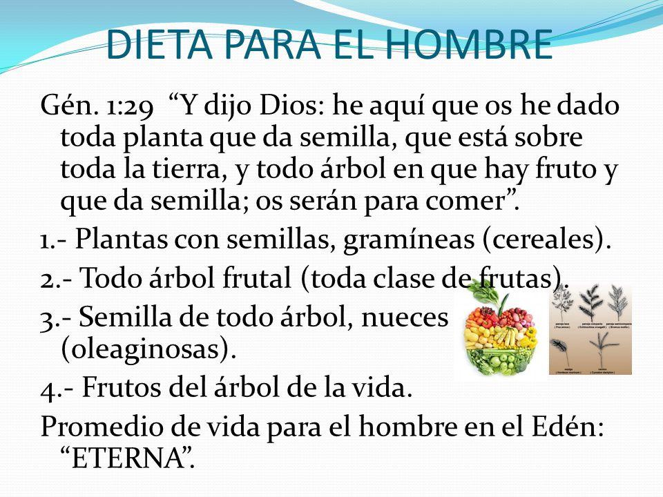 DIETA PARA EL HOMBRE