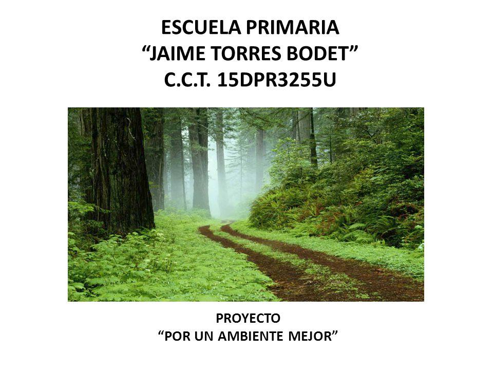ESCUELA PRIMARIA JAIME TORRES BODET C.C.T. 15DPR3255U