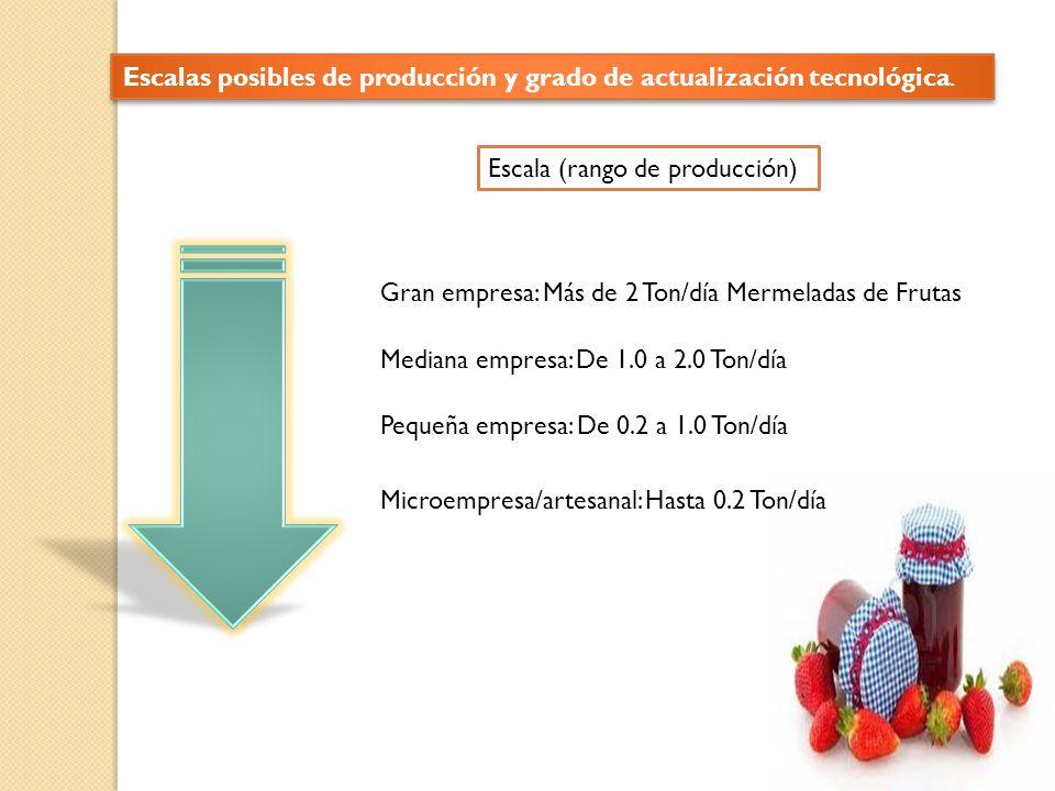 Escalas posibles de producción y grado de actualización tecnológica.