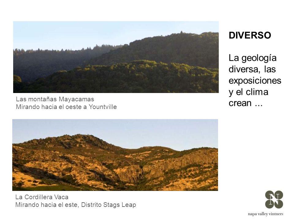 La geología diversa, las exposiciones y el clima crean ...