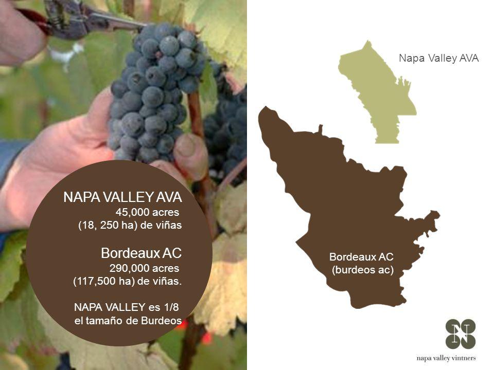 NAPA VALLEY AVA Bordeaux AC Napa Valley AVA