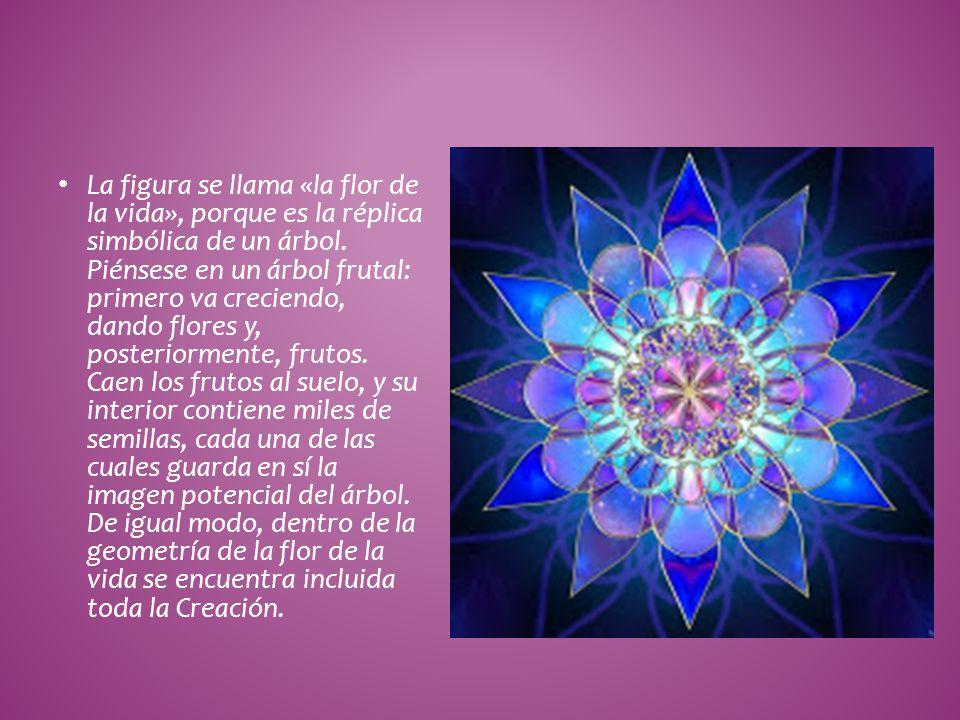 La figura se llama «la flor de la vida», porque es la réplica simbólica de un árbol.
