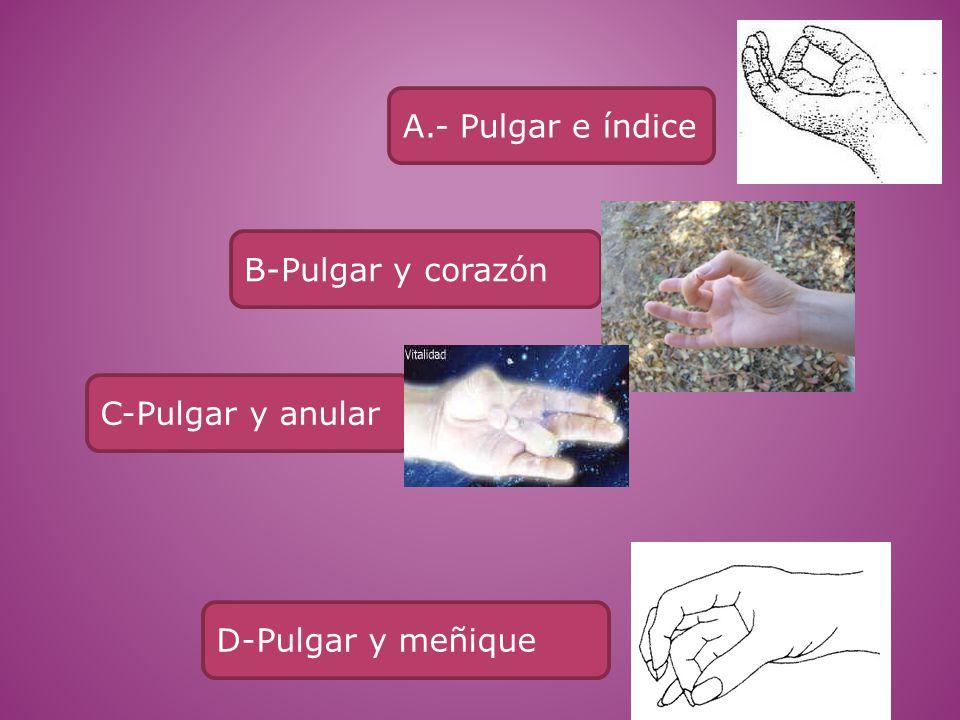 A.- Pulgar e índice B-Pulgar y corazón C-Pulgar y anular D-Pulgar y meñique