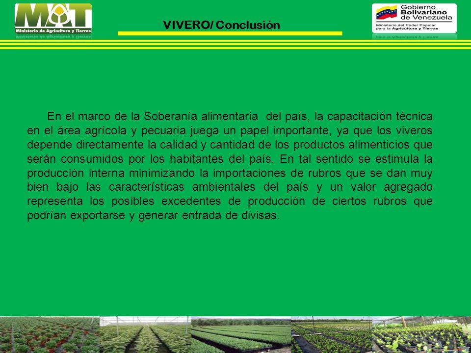VIVERO/ Conclusión
