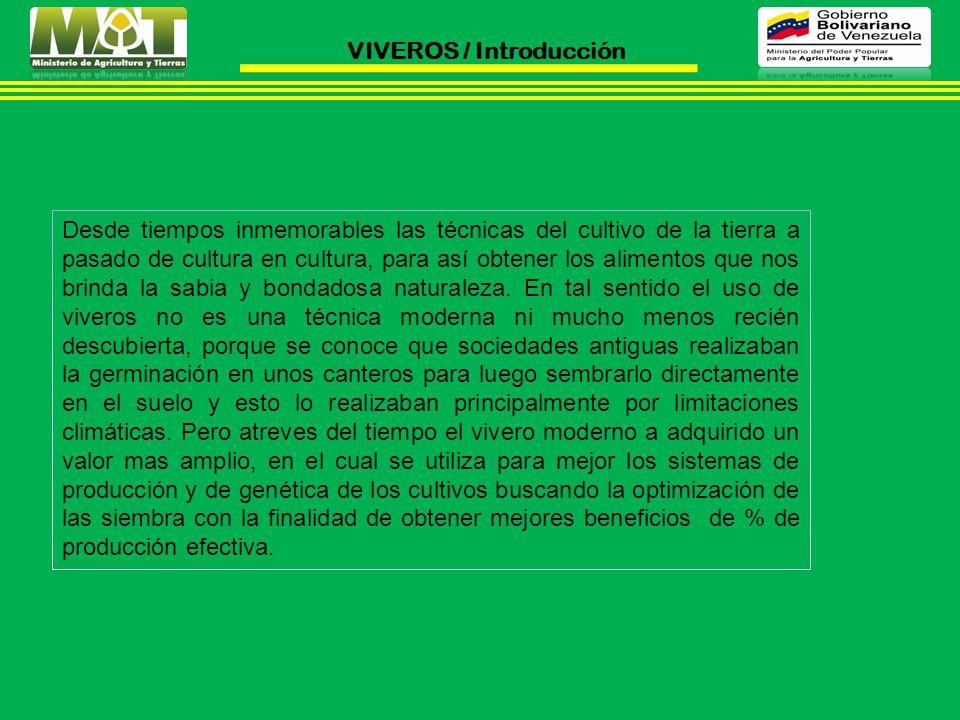 VIVEROS / Introducción