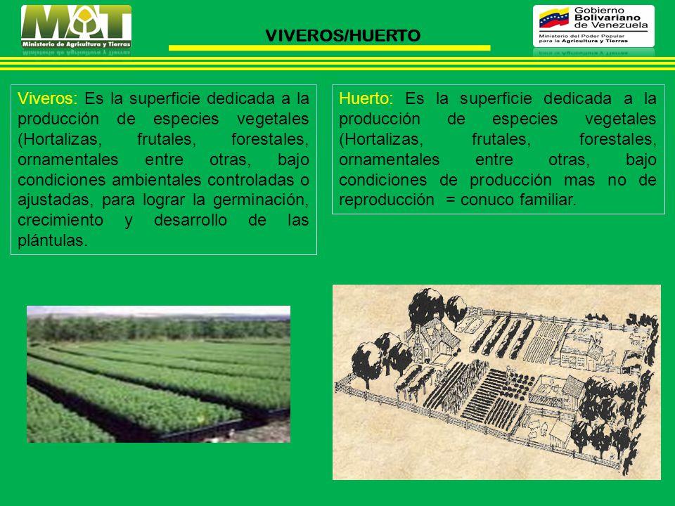 VIVEROS/HUERTO