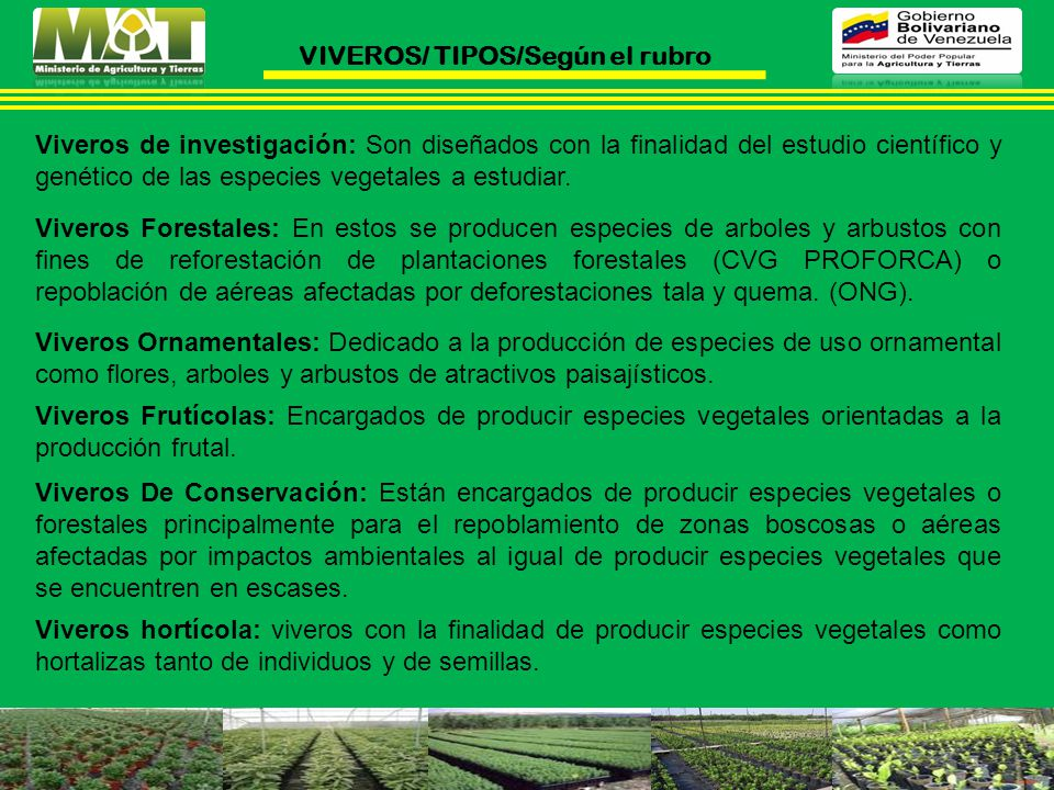 VIVEROS/ TIPOS/Según el rubro
