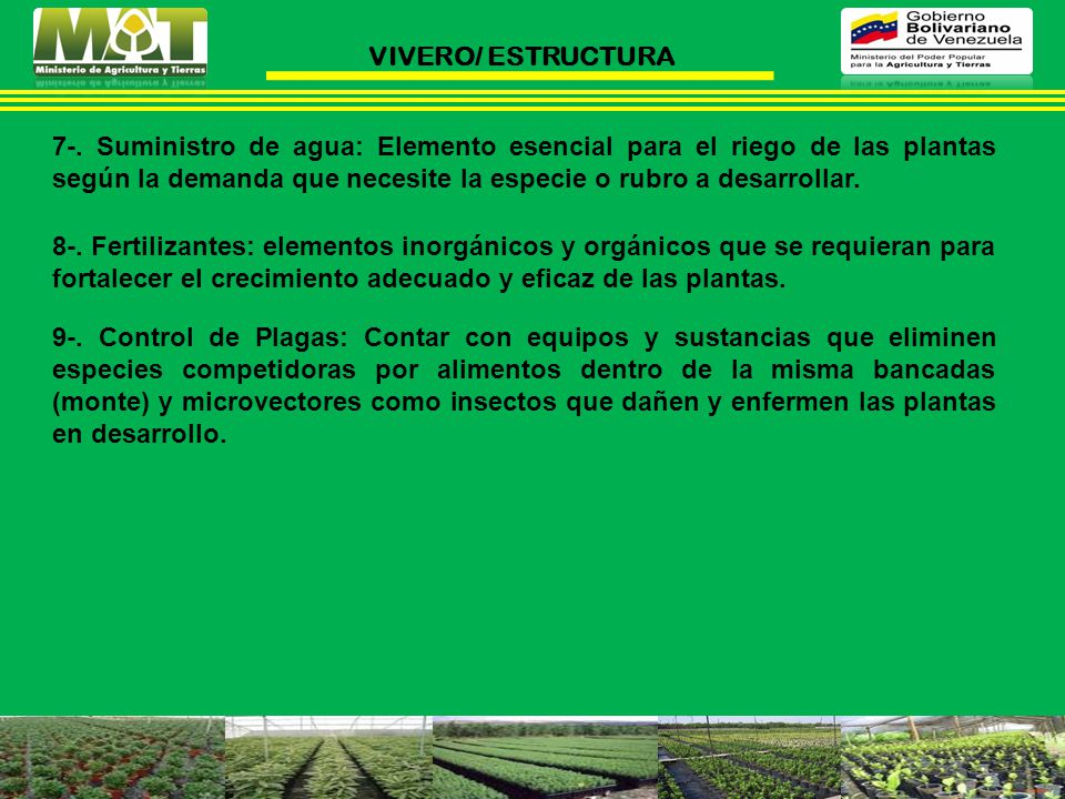 Ponecia n 1 viveros generalidades ppt descargar for Caracteristicas del vivero