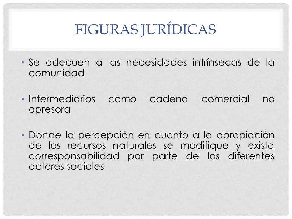 Figuras jurídicas Se adecuen a las necesidades intrínsecas de la comunidad. Intermediarios como cadena comercial no opresora.