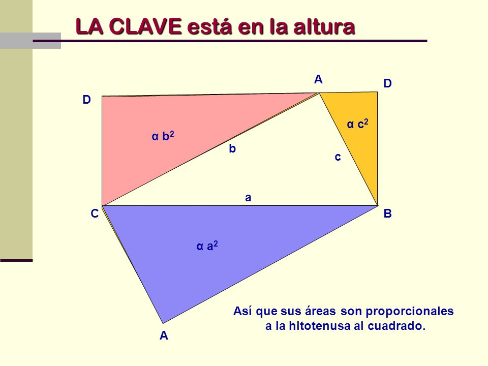Así que sus áreas son proporcionales a la hitotenusa al cuadrado.